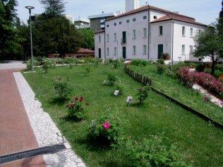 33 -Pordenone. altra vista del parco, roseto a villa Galvani,