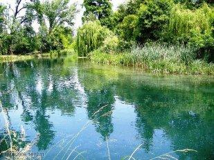 41 -Pordinone. Parco-fluviale-del-Noncello.