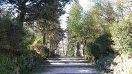 20 -Campobasso, villa De Capoa viale principale