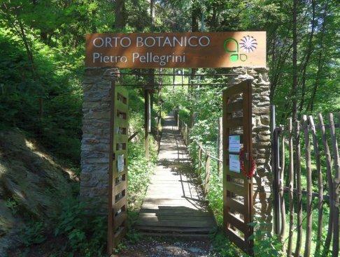 24 -Massa. L'Orto Botanico dedicato alla memoria di Pietro Pellegrini medico e botanico di Massa. Istituito nel 1966 Fa parte delle Alpi Apuane si trova in località Pian della Fioba e si raggiunge tramite via dei Marmi che costeggia il fiume Frigido.